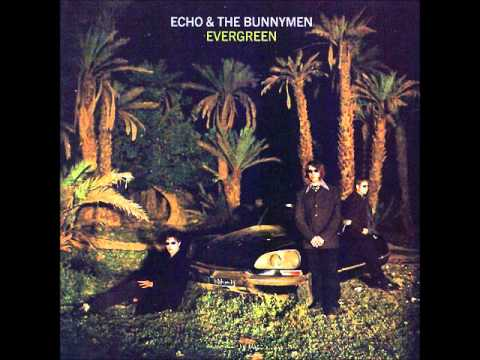 Echo & The Bunnymen - Empire State Halo