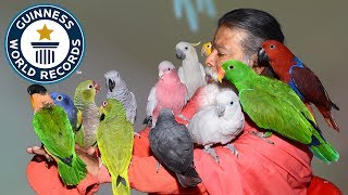 Lord of the Birds – Indian Man Dedicates His Life to Saving Endangered and Abandoned Birds