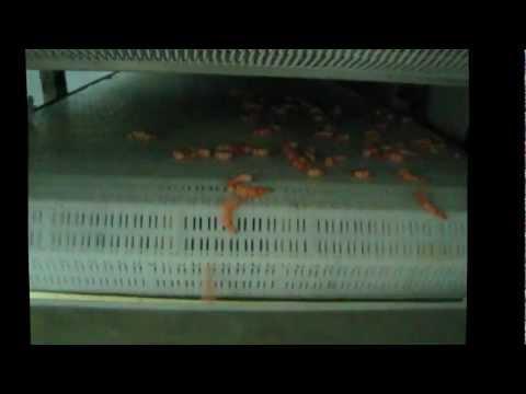 Maquinas Tecsur - Tunel continuo de congelado i.q.f  Langostinos, Camarones, Mejillón,pota, etc.