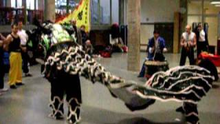 Hung Gar - Lion dance in Belgium 2009 - Chiu family