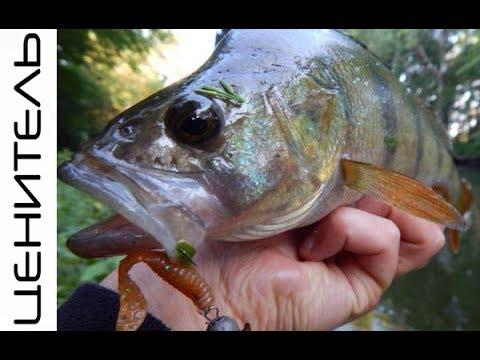 Рыбалка на ультралайтовый спиннинг. Поклевки ОКУНЯ на каждом забросе.