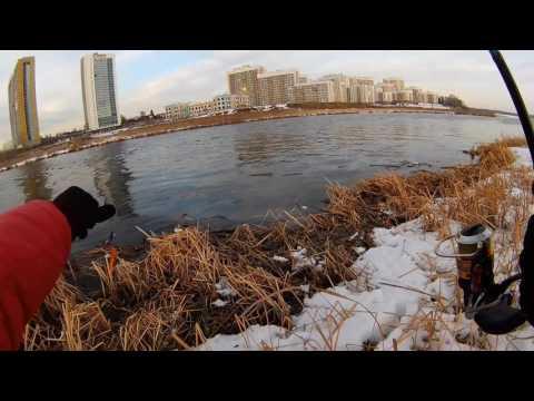 дима исетский рыбалка видео