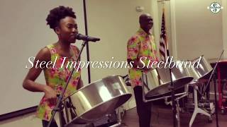 Steel Impressions Steelband at Patchogue-Medford Library 2018