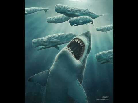Megalodon Tribute Video
