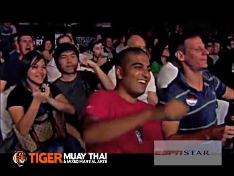 Tiger Muay Thai & MMA, Martial Combat Fighting Highlights Image 1