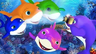 Five Little Sharks    5 Little sharks   Nursery Rhymes   Kids Songs   Baby Rhymes   Shark Song  