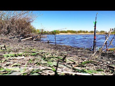 Рыбалка весной 2018 на донки (фидер) ДЕД ЗАБРАЛ ВСЮ РЫБУ