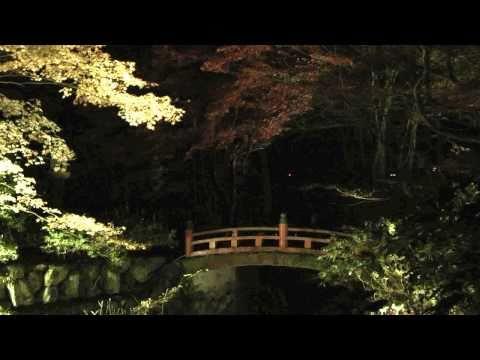 揖斐川町 ~紅葉・横蔵寺ライトアップ~