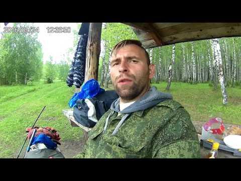 платная рыбалка в сормовском парке нижний новгород