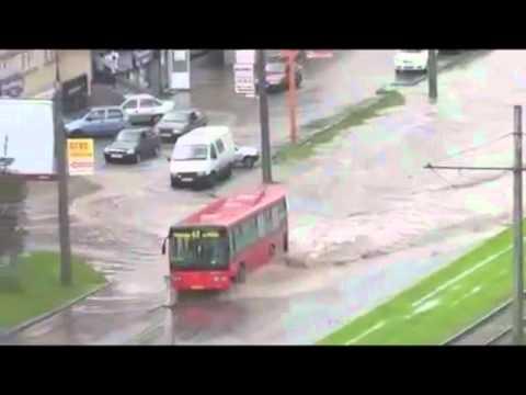 Śmieszny filmik - Bus