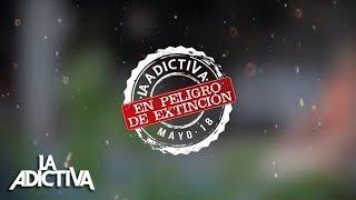 La Adictiva En Peligro De Extinción Audio