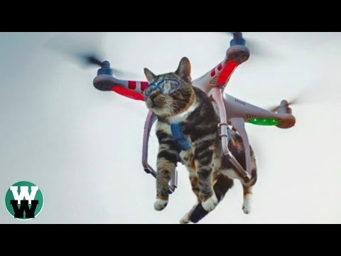 10 STUPID Things People Have Done with DRONES