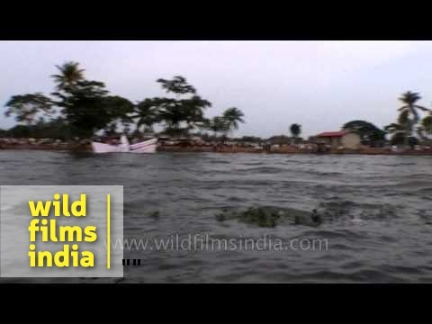 Ferries floating over Punnamada lake during Nehru Trophy Boat Race