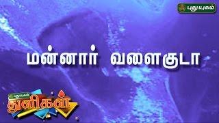 வியக்கவைக்கும் மன்னார் வளைகுடா ..   Puthuyugam Thuligal   PuthuyugamTV