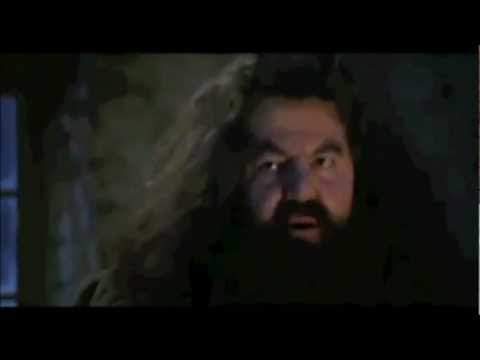 Your A Wizard Harry! Your A Faggot Harry! Original! video