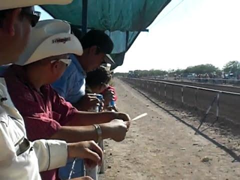 carreras de caballos en atil sonora