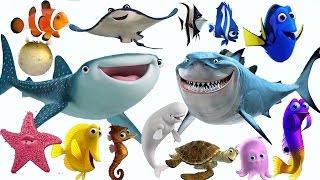 Sonidos de animales del mar para niños