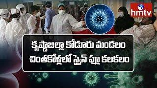 Swine Flu Fear in Chintakolla Village | Koduru  | hmtv
