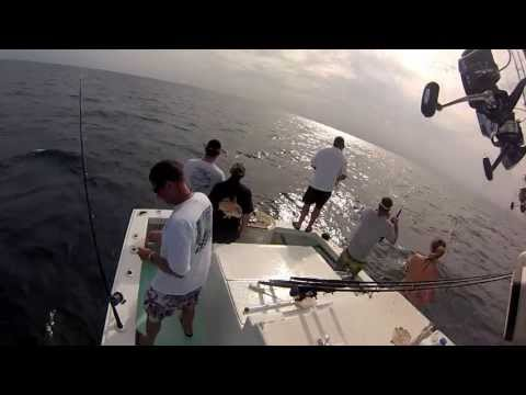 Mangrove Snapper Fishing - Relentless 2, Port Canaveral. July 2013