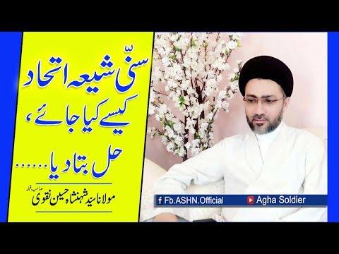 Sunni Shia Ittehad Kaise kiya Jae, Hal Bata dia by Allama Shahenshah Hussain