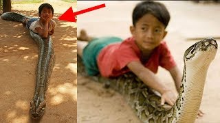 Những đứa trẻ có tuổi thơ dữ dội đặc biệt thích rắn