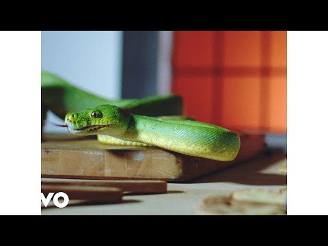 Vampire Weekend - Harmony Hall (Official Video)