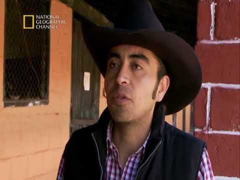 Martin Ochoteco El Domador de Caballos - Capitulo Pistolas