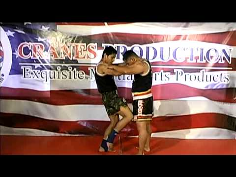 MUAY THAI Kicks & Knees DVD from World Champion(ii) Image 1
