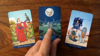 Daily Tarot Reading for 10 August 2016 | Gregory Scott Tarot