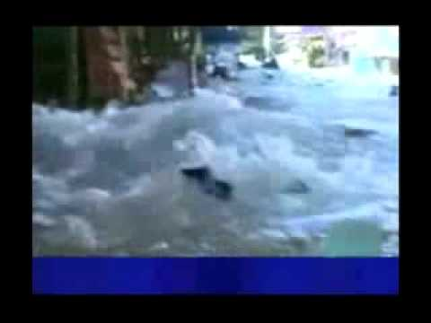 Koh Phi Phi Tsunami Video Koh Phi Phi Tsunami ii