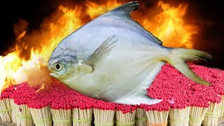 EXPERIMENT 50,000 SAFETY MATCHES vs $100 FISH