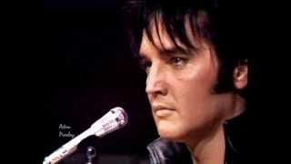 Watch Elvis Presley Love Song Of The Year video