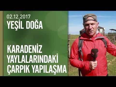 Karadeniz yaylalarındaki çarpık yapılaşma - Yeşil Doğa 02.12.2017 Cumartesi