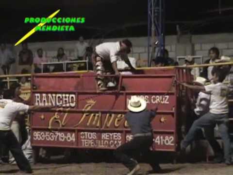 Guerreros de Oaxaca VS Aferrados de Morelos (Catrin VS Niño de Oro)