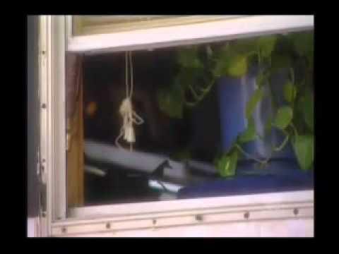 James Hicks - Serial Killer - Part 1 of 5