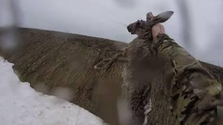 Охота на зайца 2018-19( Дело было на Кубани-3!) ( Охота состоится в любую ПОГОДУ!!! )