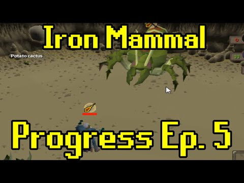 Oldschool Runescape - 2007 Iron Man Progress Ep. 5 | Iron Mammal