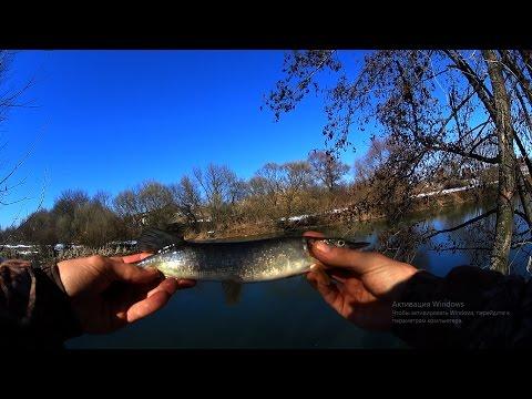 ловля на реке войнинга