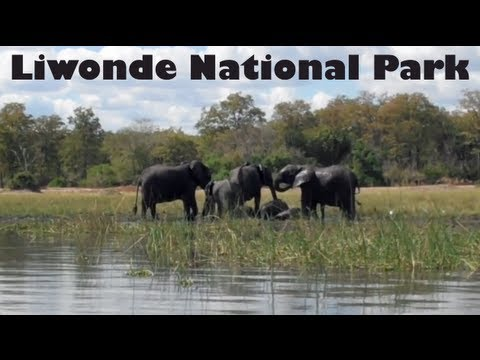 Boat Safari in Liwonde National Park, Malawi