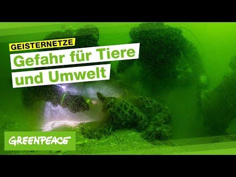 Geisternetze - Gefahr Für Tiere Und Umwelt!