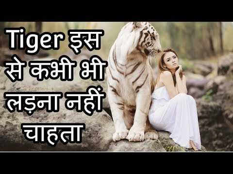 Animals Amazing Facts  In Hindi Urdu
