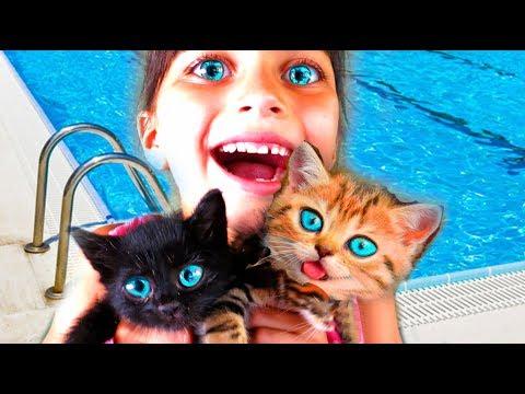СПАСЛИ КОТЯТ Симулятор Котенка Симулятор СОБАЧКИ kids game learn Little Kitten Play Fun Pet Care