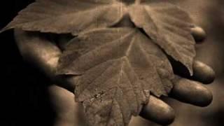 Вульгарный Тонн - Осень