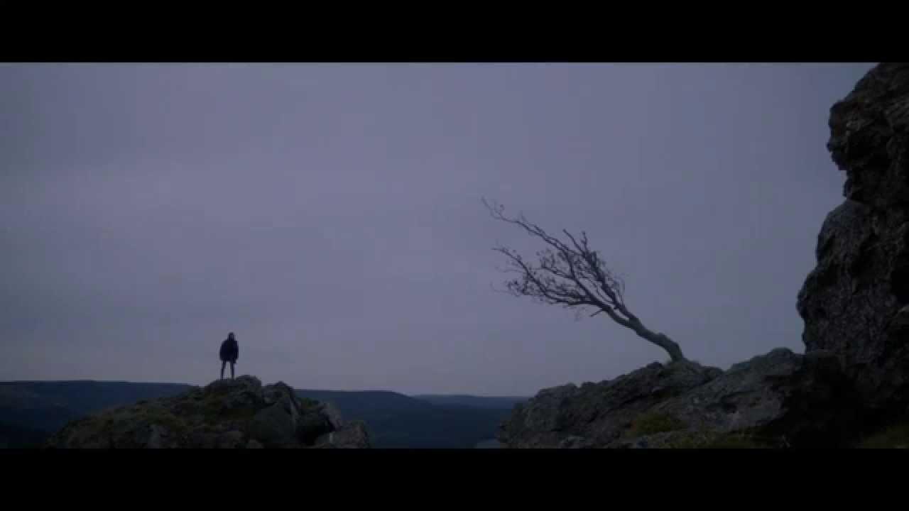 Дерево Джо / Joe's tree (Nymphomaniac Vol. 2) - YouTube