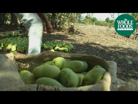 Whole Trade® Haitian Mangoes