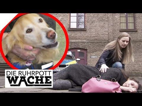 Hund unter Medikamenten-Einfluss! So reagieren Hund auf Tilidin! | Die Ruhrpottwache | SAT.1 TV