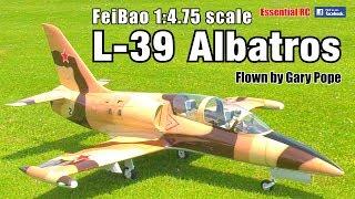 GIANT SCALE AERO L-39 ALBATROS (FeiBao 1:4.75 scale, Wren 160, Jeti)