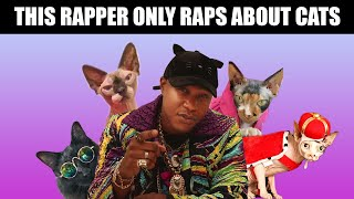 This Rapper Only Raps About Cats
