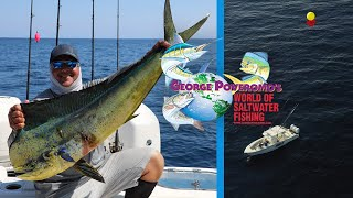 2020 SEASON - Episode 9  PALM BEACH, FLORIDA - KITE FISHING!