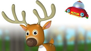 TuTiTu Animal Songs for Children   Deer Song